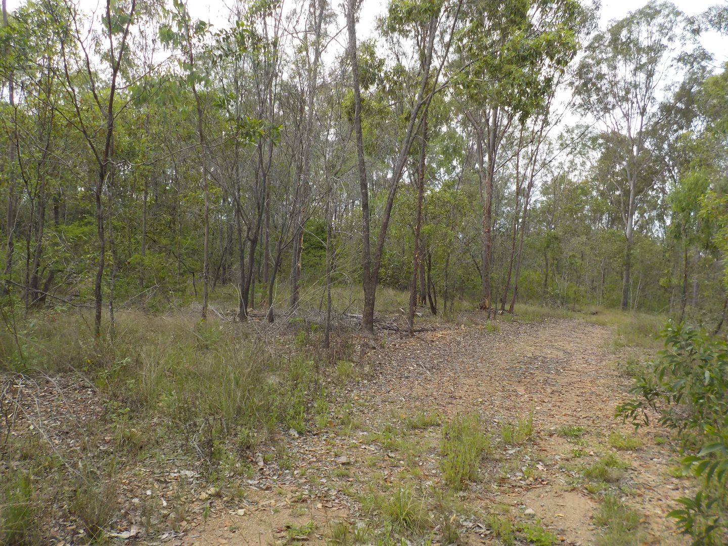 ZIMMERLIE ROAD, Gin Gin QLD 4671, Image 0