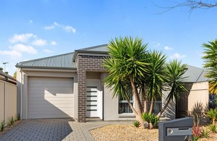 Picture of 4A Sandery Avenue, Seacombe Gardens SA 5047