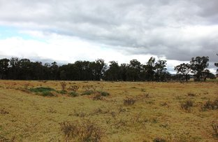 Picture of 13022 Guyra Rd, Tingha NSW 2369