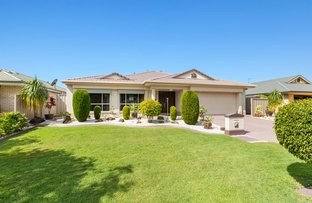 Picture of 16 Foxhill Place, Banora Point NSW 2486