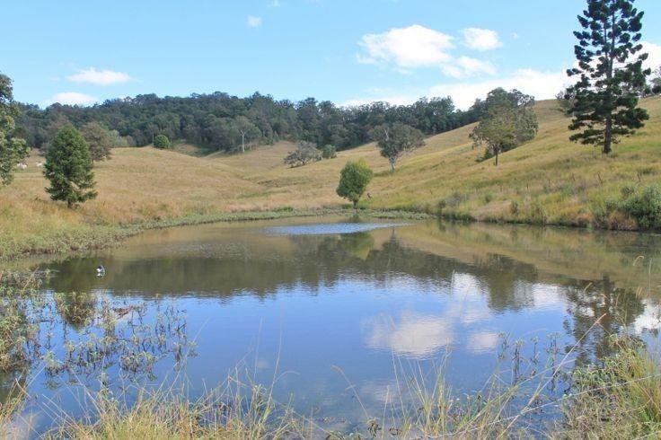 LOT 31 Collins Creek Road - Collins Creek, Kyogle NSW 2474, Image 1