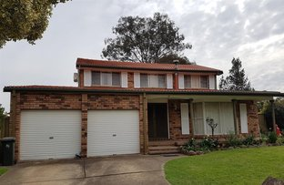 Picture of 21 Bensbach Road, Glenfield NSW 2167