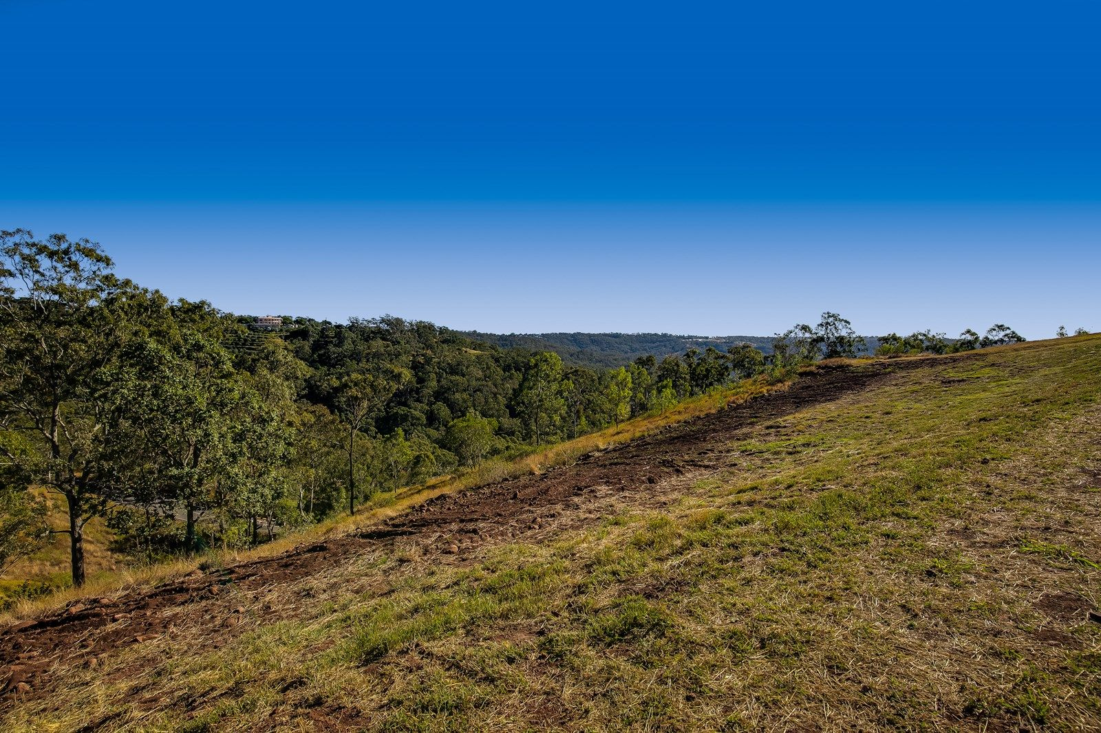 14 Keira Court, Blue Mountain Heights QLD 4350, Image 1