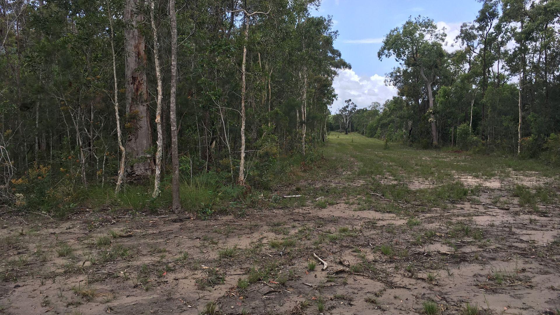 320 Newlands Road, Wamuran QLD 4512, Image 2