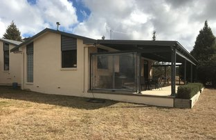 Picture of 880 Castledoyle Rd, Armidale NSW 2350