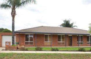 1 Harrier Street, Estella NSW 2650