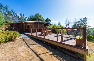 Picture of 259 Nettlefolds Road, Holwell TAS 7275