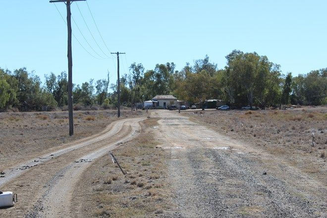 Picture of 86 Genanagie St, NARRABRI NSW 2390