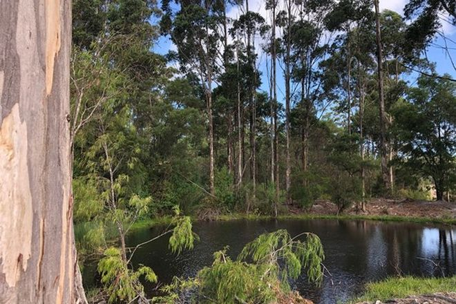 Picture of 511 Hill Brook Road (Crowea), NORTHCLIFFE WA 6262