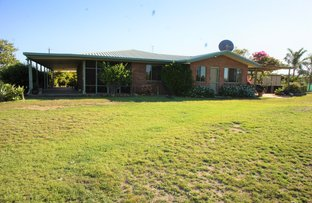 Picture of 20 Petersen Road, Alton Downs QLD 4702