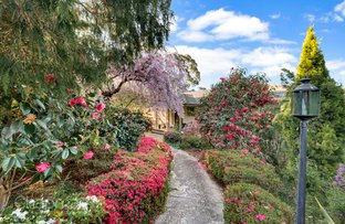 31 Vista Avenue, Lawson NSW 2783