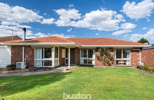 Picture of 37 Village Crescent, Chelsea VIC 3196
