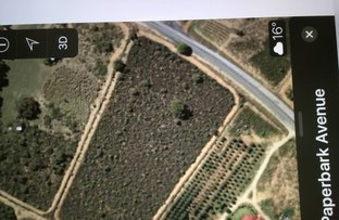 Picture of Lot 137 Paperbark Avenue, Gabbadah WA 6041