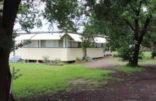 Picture of 3 Strickland Street, Merrygoen NSW 2831