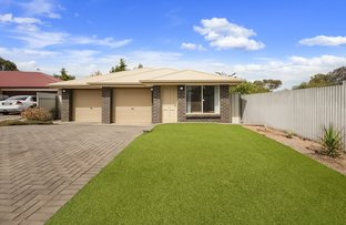 Picture of 12A Florida Court, Craigmore SA 5114