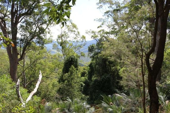 Picture of 3462 Nowendoc Road, CAFFREYS FLAT NSW 2424