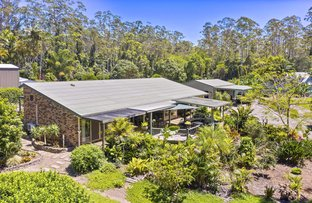 Picture of 7-11 Cardinal Court, Palmwoods QLD 4555