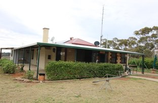 Picture of 395 Mackintosh Road, Cadell SA 5321