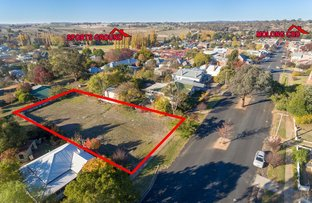 Picture of 119 Bank Street, Molong NSW 2866