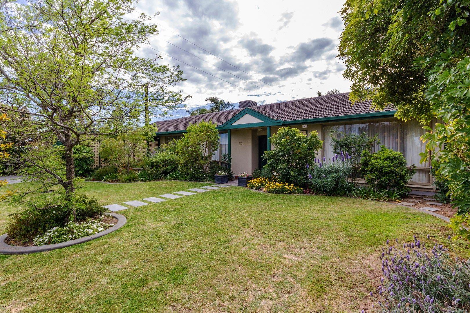 36 Old Drive, Novar Gardens SA 5040, Image 0