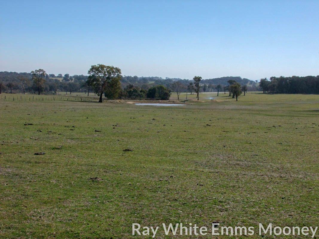 Yangoora Road, Garland NSW 2797, Image 0