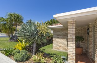 Picture of 1/11 Tralee Drive, Banora Point NSW 2486