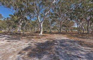 50A Blackbutt Drive, Failford NSW 2430