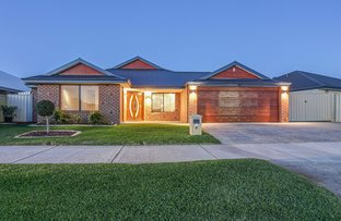 Picture of 17 Beachwood Crescent, Butler WA 6036