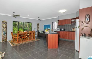 Picture of 9 Palmetto Street, Palm Cove QLD 4879
