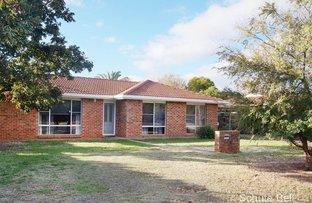 Picture of 143 Dappo Rd, Narromine NSW 2821