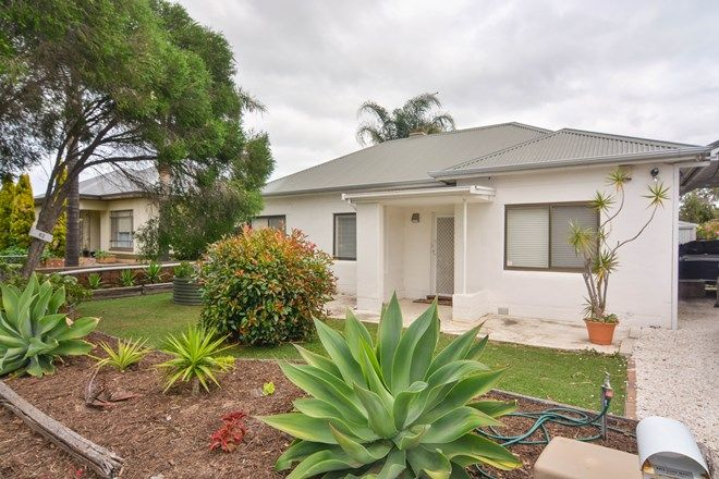 Picture of 62 Dingera Avenue, NORTH PLYMPTON SA 5037