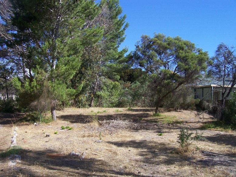 51 Ti-Tree Road, The Pines SA 5577