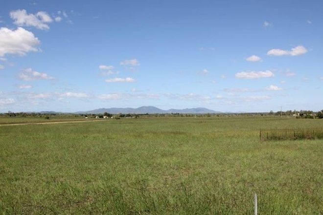 Picture of 167 Pandora Road, ALTON DOWNS QLD 4702
