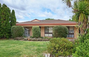 Picture of 17 Warrambool Crescent, Glenfield Park NSW 2650