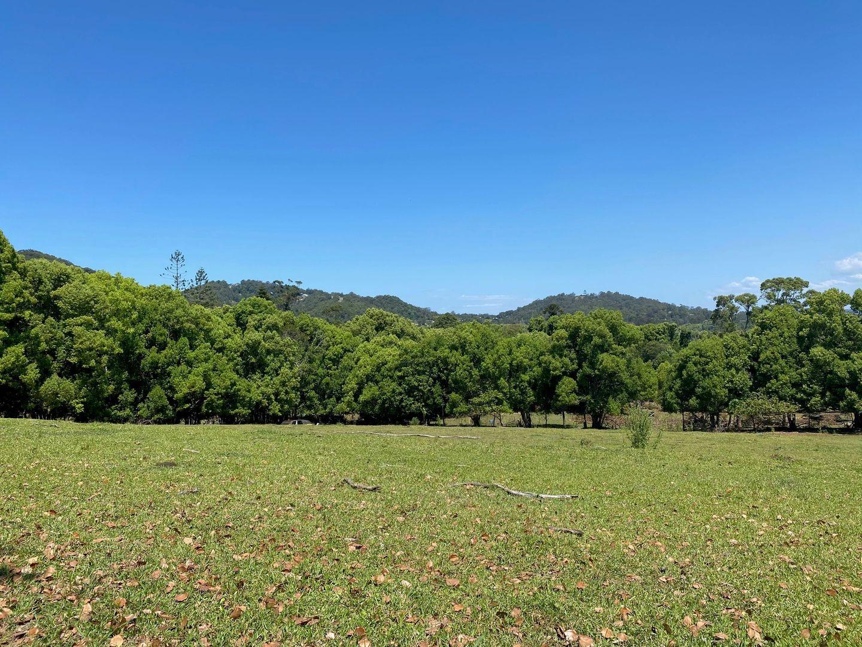 236 North Arm-Yandina Creek Road, North Arm QLD 4561, Image 1