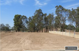 Picture of Lot 4167 Willowdale Stage 16C, Leppington NSW 2179