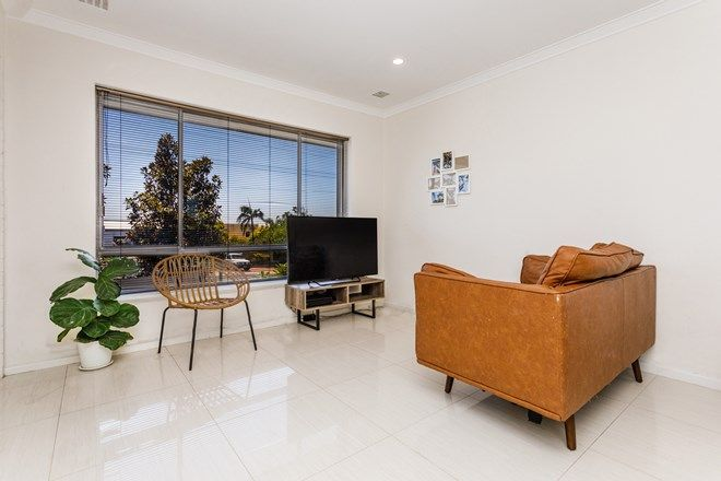 Picture of 6/219 Scarborough Beach Road, DOUBLEVIEW WA 6018
