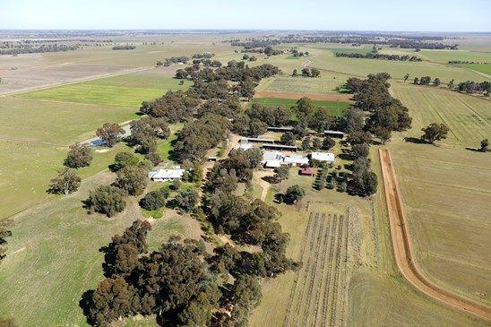 Picture of 6496 Conargo Road, DENILIQUIN NSW 2710