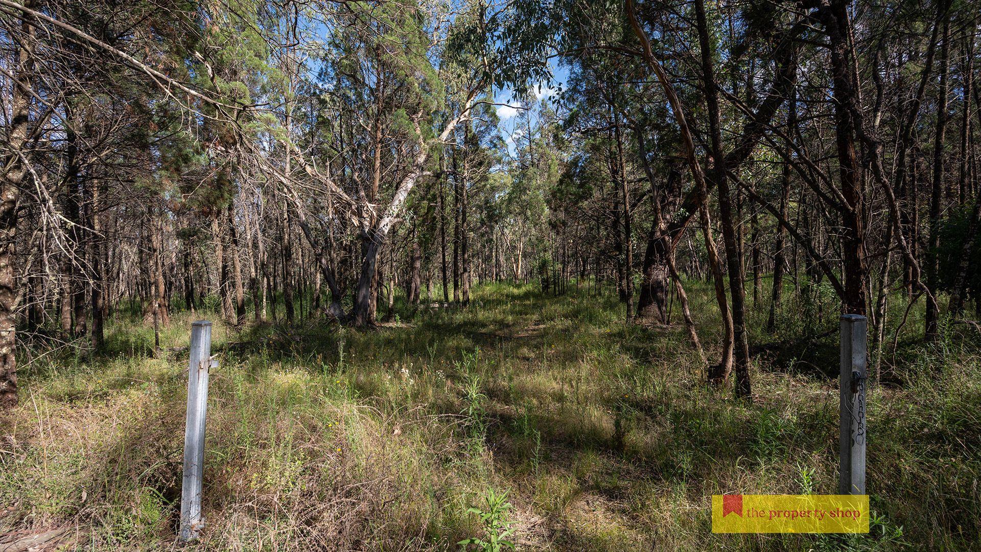 290 Cypress Drive, Mudgee NSW 2850, Image 1