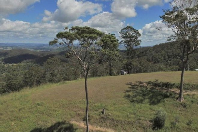 Picture of 1033 Black Mountain Road, FEDERAL QLD 4568