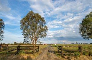 Picture of 58 Holleys Lane, Gulgong NSW 2852