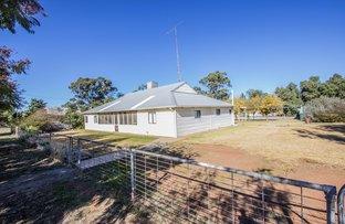 Picture of 22 Mulga Street, Barellan NSW 2665