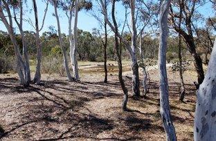 417 Duckfield Road, Lower Boro NSW 2580