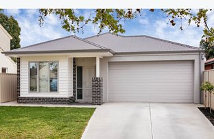 31 Stephens Avenue, Torrensville SA 5031
