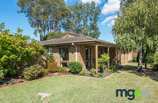 Picture of 2 Sarose Court, Dingley Village VIC 3172