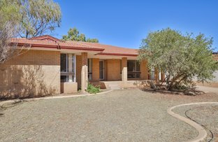 Picture of 49 Cotter Street, Hannans WA 6430
