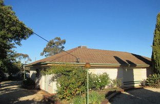 Picture of 14 Long Street, St Arnaud VIC 3478