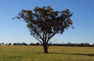 Picture of . East Gathen, Deniliquin NSW 2710