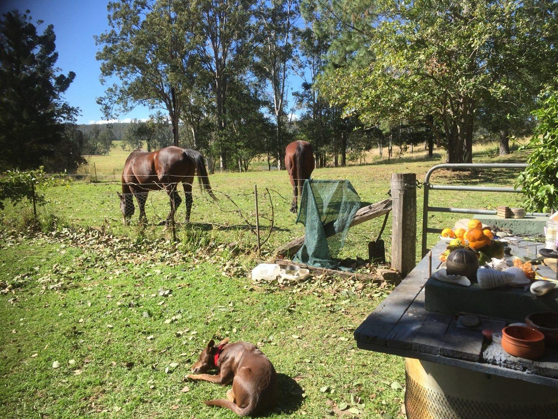 Mallanganee NSW 2469, Image 0
