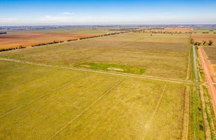 Picture of 2851 Irrigation Way, Murrami NSW 2705